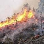 هشدار محیط زیست آذربایجان شرقی نسبت به آتش سوزی در مناطق جنگلی و مرتعی