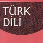 علامت حاصل مصدر یا اسم و صفت مشتق در زبان ترکی