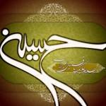 حضرت علی اصغر ین شهادتی و صون گوروشمه
