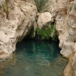 چشمه های طبیعی کرمان ؛ جلوهای زیبا از طبیعت سحرآمیز